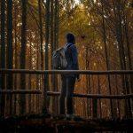 Arti Kata Hunting Dalam Bahasa Gaul dan Indonesia