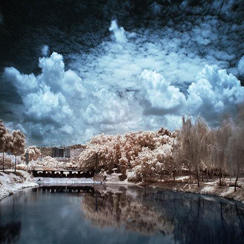 Fotografi Infrared