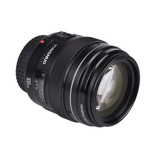 Fotografi Makro Pilih Lensa Yang Bagus